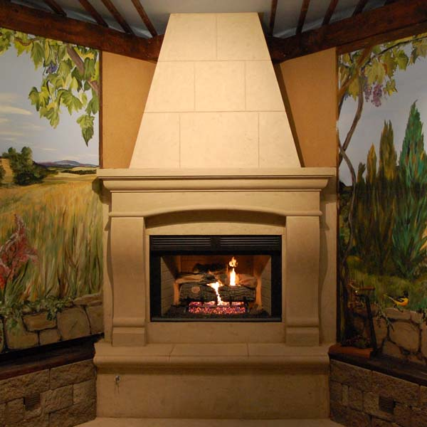 Recent Fireplace Install